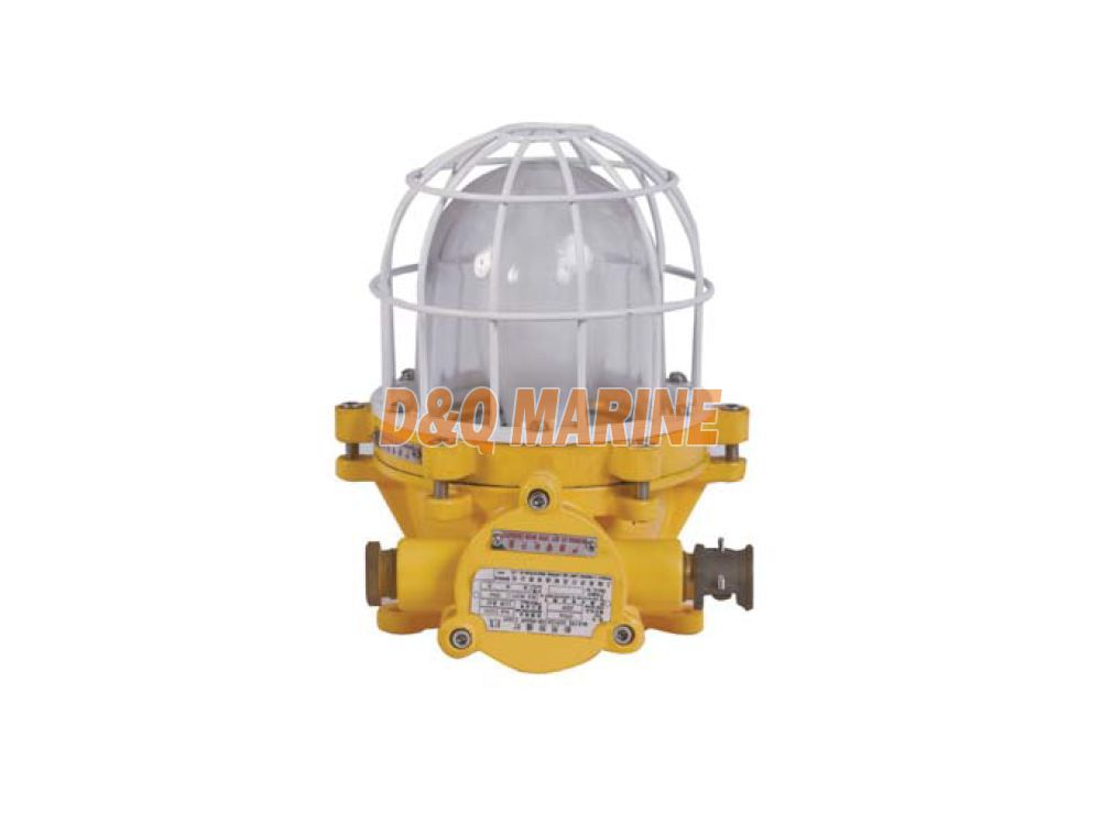 CFD2a Explosion Proof Light