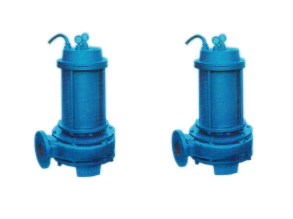 CQL(CQLW) Series Marine Vertical Submersible Electricity Pump