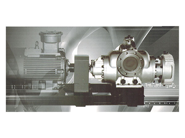 HW and HM Series double screw pump