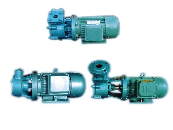 Model W Single Stage Vortex Pump