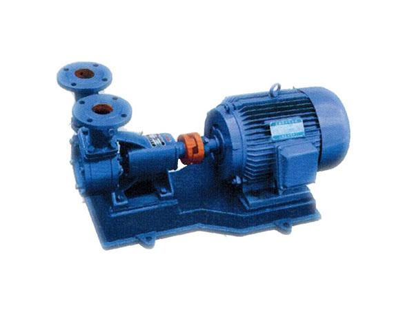 W Series Perpheral Pump