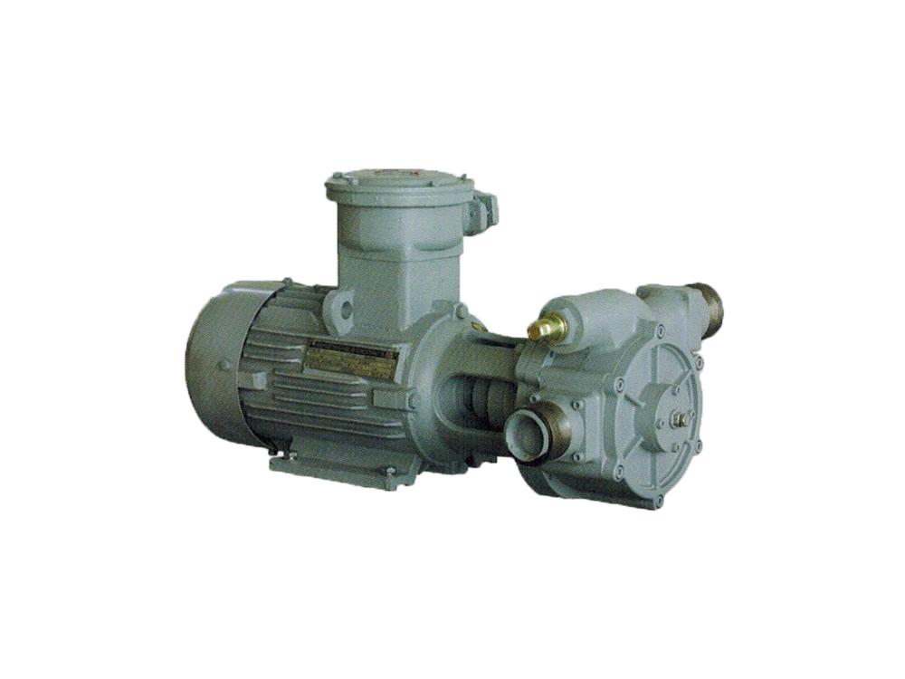 DYB-300/400 Series Vane Pump