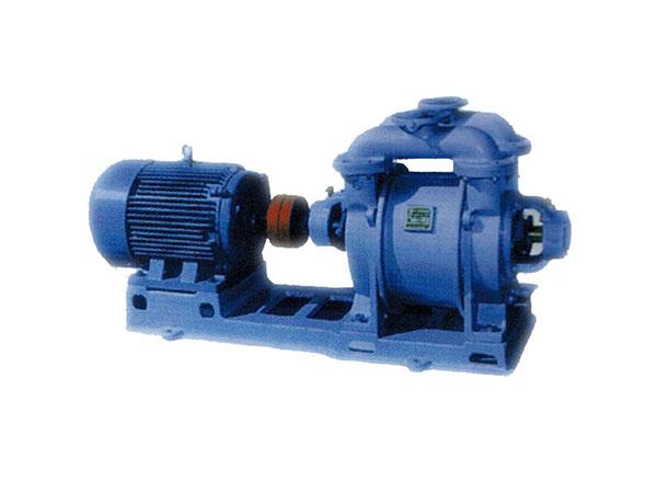 Marine Vacuum Pump