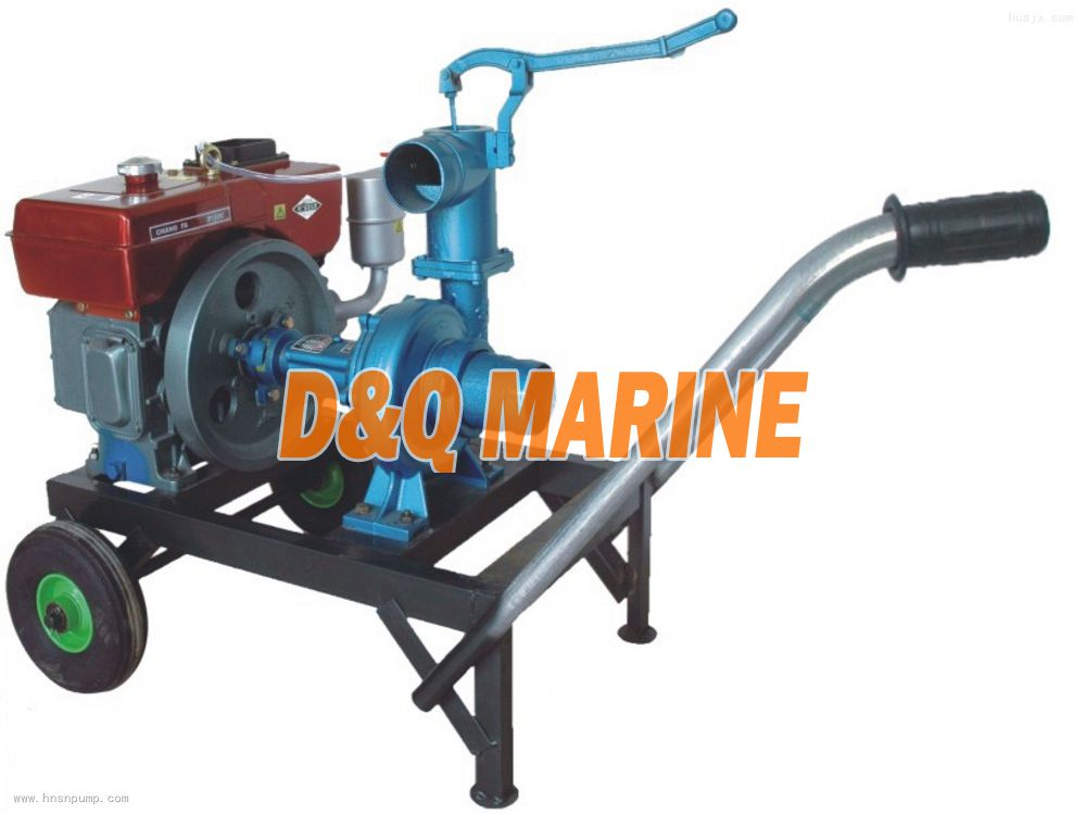 Single Cylinder Diesel Pump