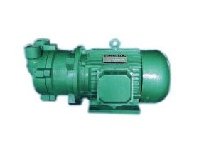 CSK Series Marine Water Circulation Vacuum Pump